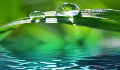 Mindfulness y Psicología: beneficios de su práctica durante la terapia