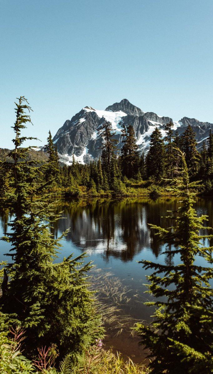 Naturaleza y aire libre: beneficios para combatir el estrés