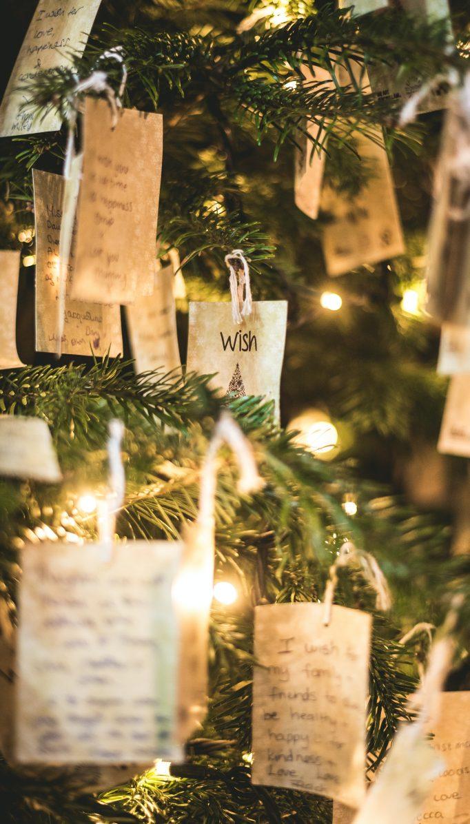 Pautas para sobrevivir esta navidad